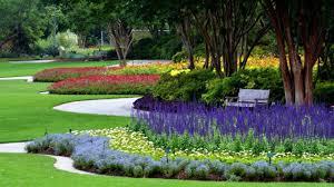 Dallas Arboretum And Botanical Garden Summer At The Dallas Arboretum