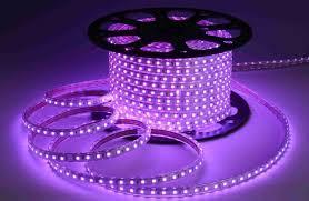 ribbon lights high voltage waterproof led rope lights 220v 5050 60d purple led