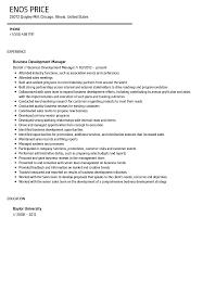 Resume Of Business Development Executive Business Development Manager Resume Sample Velvet Jobs