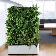 vertical garden collection on ebay
