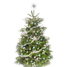 Decoration Christmas Tree White by Festive Decorated Christmas Tree Pines And Needles
