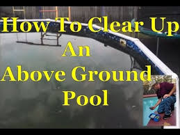 how to easily clear up algae green above ground swimming pool