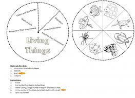 classification of living organisms worksheet worksheets