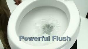 Kohler Toilets Seats Kohler Toilets Cavata In White Includes Cachet Q3 Toilet Seat