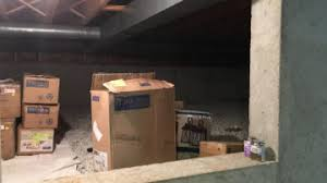 basement waterproofing services crawl space mold alliance