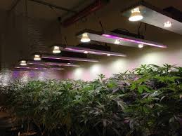 diy cree led grow light cheap the ice capades find the ice capades deals on line at alibaba com