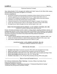 sales resume format sales executive resume format