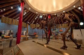 Oregon Zoo Zoo Lights by Lilah Callen Holden Elephant Museum Oregon Zoo