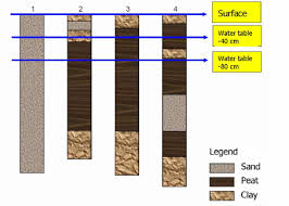 The Location Of The Water Table Is Subject To Change Various Shallow Cores Retrieved In The West Of The Netherlands