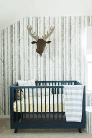 Room Wallpaper 751 Best Boy Nurseries Images On Pinterest Baby Boy Nurseries
