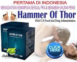 testimoni hammer of thor obat kuat best seller tahun ini namablog