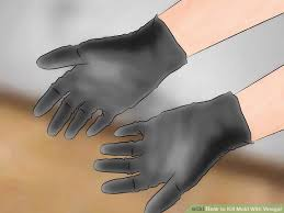 How To Stop Mold In Basement by 2 Simple Ways To Kill Mold With Vinegar Wikihow