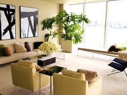 home interior design nz