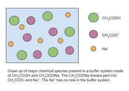 buffer system in chemistry definition u0026 overview video u0026 lesson