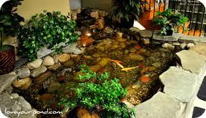 mini indoor garden pond design ideas indoor pond pinterest
