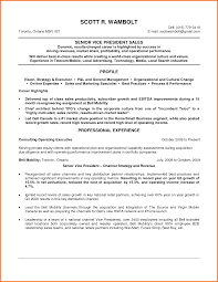Best Resume Format For Vice President by Vice President Resume Samples