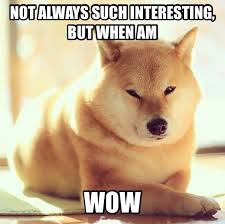 So Doge Meme - the most interesting doge in the world doge meme and funny things
