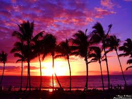 i wish i was in hawaii u2026 maui hawaii hawaii and spaces
