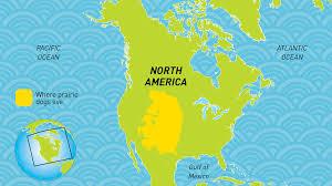 Prairies In World Map by Prairie Dog