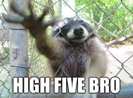 High Five Meme - high five bro bro racoon quickmeme