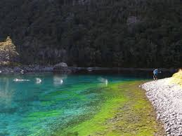 Clearest Water In The Us Blue Lake In New Zealand Is The Clearest Lake In The World