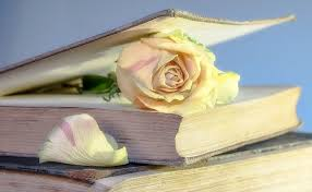Drying Flowers In Books - preserve flowers with borax tips for best results the