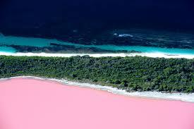 the clearest lake in the world u2013 blue lake new zealand eggwhite