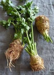 Green Root Vegetable - trendy give root vegetables the raw treatment today com