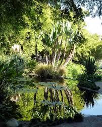 Huntington Botanical Gardens Pasadena by 43 Best Succulent Cactus Garden At Huntington Images On Pinterest