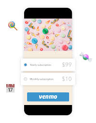 Six Flags Payments Venmo Braintree Payments