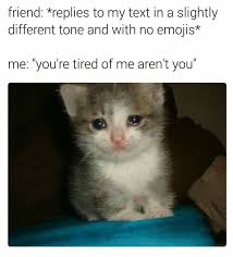 Sad Kitty Meme - 156 best memes images on pinterest funny things funny stuff and
