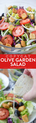 best 25 olive garden salad ideas on olive garden