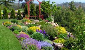 central florida landscaping ideas beautiful central florida