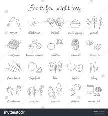 foods weight loss low fat diet stock vektorgrafik 393603109