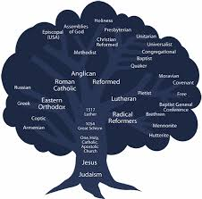 christian denominations family tree from evangelical covenant