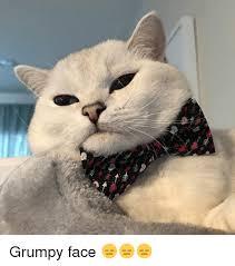 Grumpy Face Meme - 25 best memes about grumpy face grumpy face memes