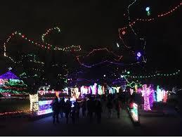 Rhema Christmas Lights The Persimmon Perch 12 01 2016 01 01 2017
