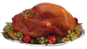 happy thanksgiving a about the ecology of turkeys