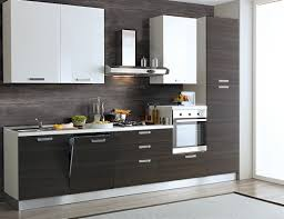 Dotolo Cucine by Emejing Cucine Con Lavastoviglie Images Skilifts Us Skilifts Us
