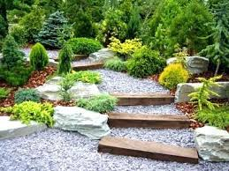 Rock Garden Plants Uk Rock Gardening Rock Garden Pools Rock Garden Plants Ontario