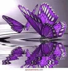 imagenes bonitas que brillen mim s infinity insecto chicks
