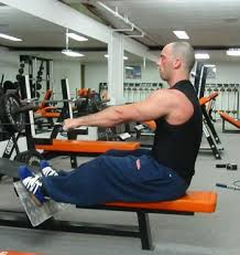 Bench Barbell Row Training For Newbies Part 1 2 Christian Thibaudeau Body