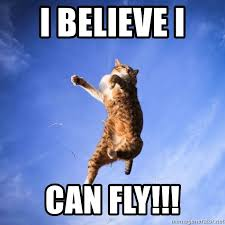 I Believe I Can Fly Meme - i believe i can fly jumping cat meme generator