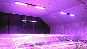 led marijuana grow lights led grow lights