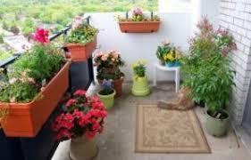small balcony garden ideas india archives audiomediaintenational