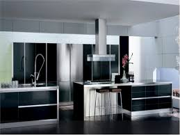 awesome black white stainless cool design kitchen cabinet wood