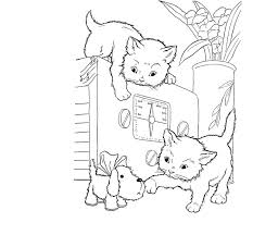 66 color cats u0026 dogs images coloring books