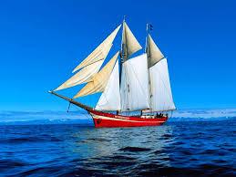 sailboat wallpaper desktop wallpapersafari