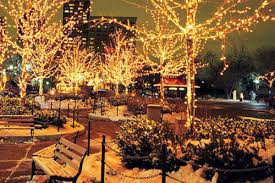 top chicago holiday tours christmas lights tours u0026 dinner cruises