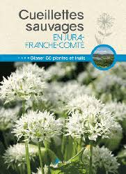 cuisine sauvage couplan cuisine sauvage accommoder mille plantes oubliées françois